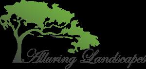 Alluring Landscapes